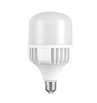 15W LED T Bulb