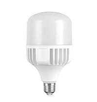25W LED T Bulb
