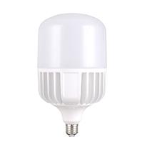 60W LED T Bulb