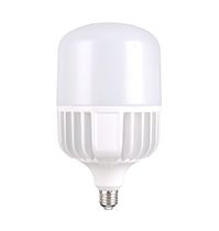 70W LED T Bulb